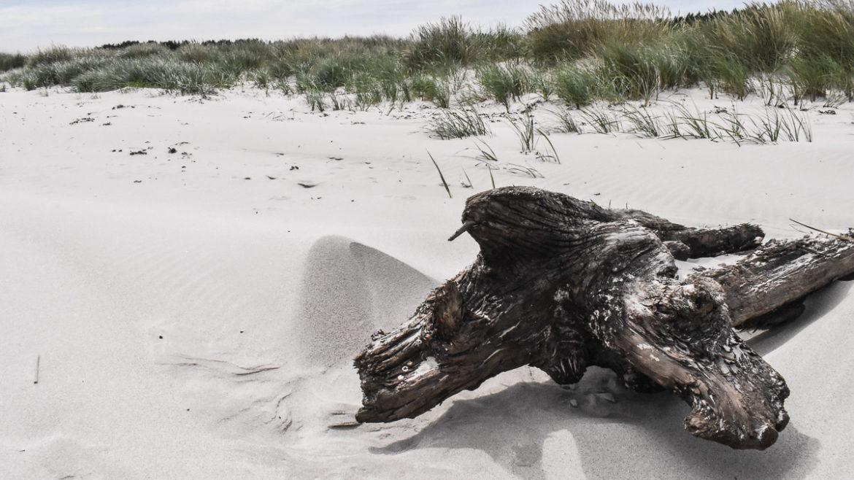 Mälarhusens strand